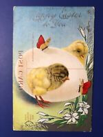Easter Unique & Rare Antique Postcard. Chicks. Collector Items. Mirror Printing