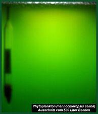 Phytoplankton, Plankton, - 2l-Ansatz plus 2x50 ml Spezialdünger