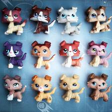 Pet Shop Dog Rare collie  dog Random 5 Piece for girls gift