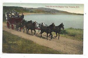 VICTORIA, BRITISH COLUMBIA Tally Ho on the Dagley Trip - Horses