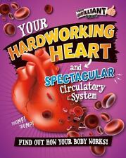 YOUR HARDWORKING HEART AND SPECTACULAR CIRCULATORY SYSTEM