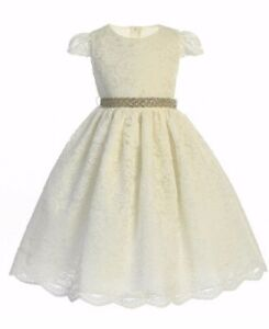 Exquisite Ivory Lace Flower Girl Party Pageant Dress, Crayon Kids USA