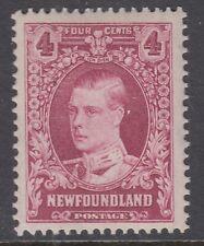 Newfoundland No. 175 Mint Never Hinged Very Fine single