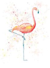 Peinture Numérique Evry Flamant Rose Poster Wall Art Imprimé Photo LF2912
