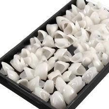 1 box Dentist porcelain Denture Dental Anterior Teeth Shade Guide Replace