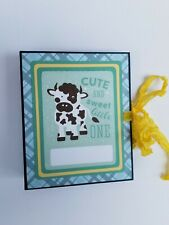Baby Boy Brag Book/Mini Scrapbook Album
