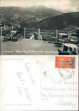 ACCUMOLI - M. PIZZO DI SEVO m.2422 VISTO DALLA PINETA BELVEDERE   (rif.fg.6092)
