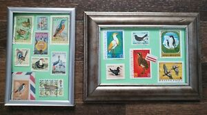 Birds from around the world Framed & Mounted Picture from Postage Stamps display