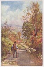 Theydon Mount, Epping, Essex, Tuck 7489 Art Postcard, B696