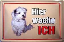 Hier wache ICH Cesar Hund Blechschild Schild Blech Metall Tin Sign 20 x 30 cm