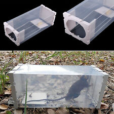 White Humane Rat Trap Cage Animal Pest Rodent Mice Mouse Bait Catch Capture TP