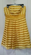 The limited golden stripes strapless dress size 10