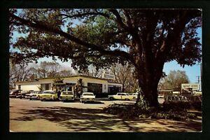Georgia GA postcard Albany, Merry Acres Restaurant chrome