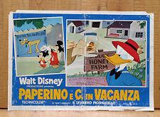 PAPERINO E C. IN VACANZA fotobusta poster Walt Disney Donald's Magic Summer