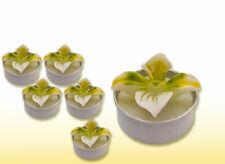 6 Teelichter als Orchideen