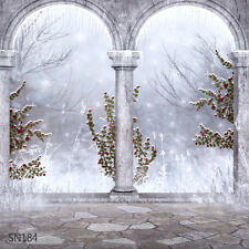 Christmas Snow Winter  10 x 10 FT CP PHOTO SCENIC BACKGROUND BACKDROP Sn184