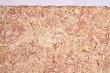 Trixie Sphagnum Moss Tropical terrarium Substrat brique, 4.5 L