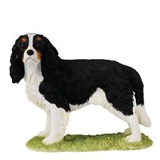 Border Fine Arts Dog Collection A26094 Cavalier King Charles Spaniel Tricolour