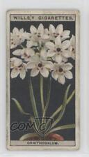 1925 Wills Flower Culture in Pots Tobacco Base #38 Ornithogalum Card 1t5