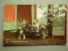 R&L Postcard: Cat Kitten in Toy Trolley Basket