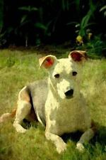 Renaissance Dogs: Jack Russell : Jack Russell Terrier: Journal/Notebook/Diary.
