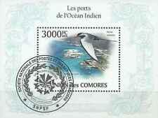 Timbre Oiseaux Comores BF252 o année 2010 lot 12632 - cote : 21 €