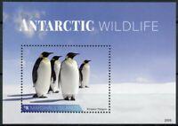Marshall Islands Stamps 2020 MNH Antarctic Wildlife Emperor Penguins 1v S/S