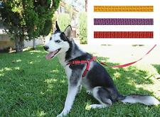 Wholesale 12Pcs A Set Dog Adjustable Nylon Harnesses Easy To Use With Leash Xs