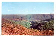 Devil's Saddle West Virginia Postcard From Allegheny Mountains 1964 Postmark