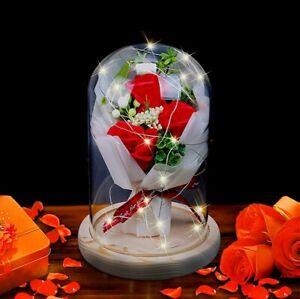 Rose im Glas Die Schöne und das Biest Glühende ewige Blume Geburtstag Valentins