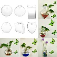 Hanging Glass Ball Vase Flower Plant Pot Stand Terrarium Container Home Decor DY