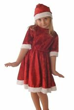 Polyester Christmas Fancy Dresses for Girls