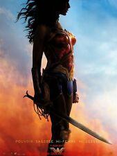 WONDER WOMAN Affiche Cinéma Pliée 160x120 Movie Poster Gal Gadot