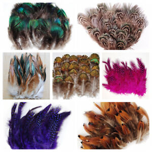 "Feather PLUMAGE Assorted 2""-8"" Peacock & Pheasant 100-500 Pcs; Halloween/Costume"