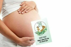 "Pregnancy Milestone Cards, Lion King, Pack of 30, New Mum, 6""x4"" 300 gsm Card"