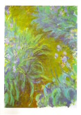 IRISES Claude Monet 1914 New! Postcard National Gallery Rare Classic Collectable