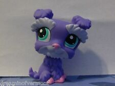 Littlest Pet Shop ~Purple Schnauzer with Teal Eyes #1928 ~ New Loose