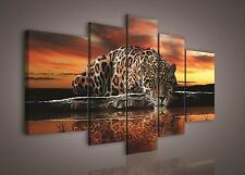 LEINWAND BILD WANDBILD BILDER (PS101S4A) Gepard Tiere Sonnenuntergang 170x100cm