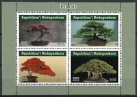Madagascar Trees Stamps 2019 MNH Bonsais Bonsai Tree Nature 4v M/S I