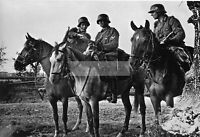 WWII photo 1st Cavalry division of the Wehrmacht in intelligence 945