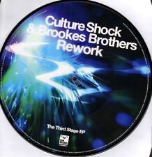 "CULTURE SHOCK & BROOKES BROTHERS rework/zeppelin (picture disc) 12"" VG RAMM66Y"