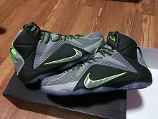 Nike Lebron Xii 12 Dunkforce Dunk force Man Dunkman Sold Out Sz 12