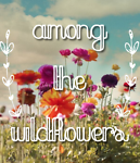 Among the Wildflowers Preloved