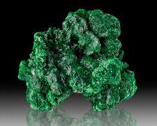 "2.3"" Dark Green Silky Radiating FIBROUS MALACHITE Crystals Congo for sale"