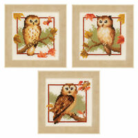 1x Counted Cross Stitch Kits Autumn Owls Set of 3 Sewing Craft Tool Art