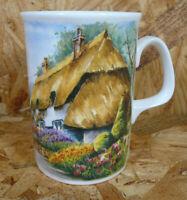 Royal Doulton Expressions English Bone China COUNTRY COTTAGES Mug England