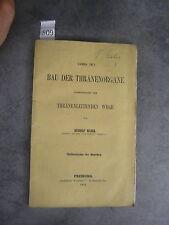 R. Maier Ueber den bau der thränenorgane Monoyer ophtalmologie optique médecine