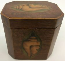English 19th C Marquetry Inlay Shell Tea Caddy