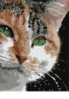 Serious Cat Needlepoint Kit or Canvas (Animal)