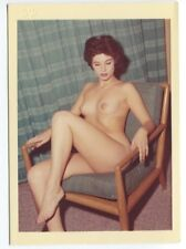 Nude Brunette Female Artistic Pose By Harrison Marks 1950 Original Photo  B6389